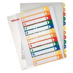 Regiszter A/4 MAXI 1-12 nyomtatható 100214